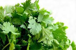 Mint Vegetable
