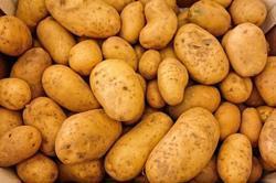 Potatoes Vegetable